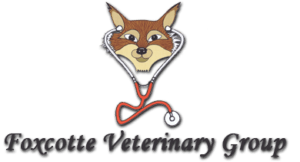 SBC Customer review for Foxcotte vets
