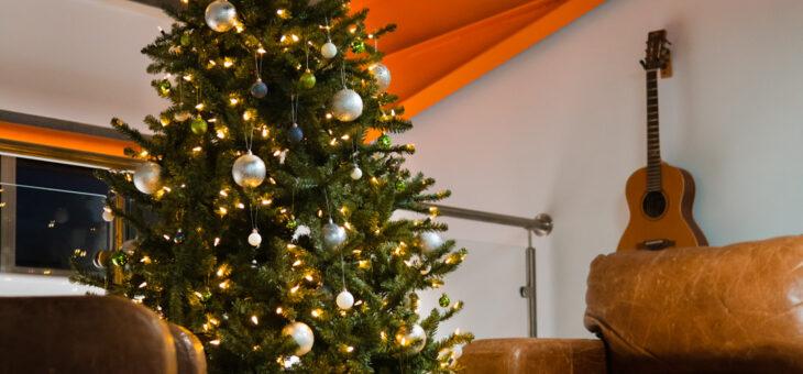 The SBC Christmas Tree Is Up! The 2020 Christmas Season